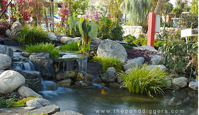 Don't break the basic Pond Design Rules or you will pay in the long run