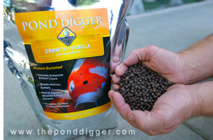 Offer your fish Premium Koi Fish Food