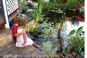 Ponds, People and Backyard Waterfalls